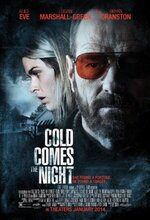 Gece Ayazi (Cold Comes the Night) (2013)