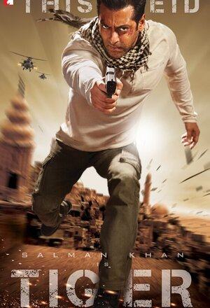 Ek Tha Tiger (Once There Was a Tiger) (2012)