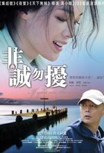 Fei cheng wu rao (If You Are the One) (2008)