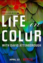 Life in Colour (2021 - )